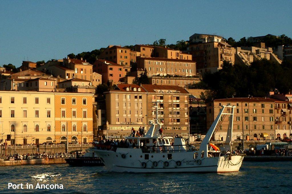 Fishing boat in Ancona port